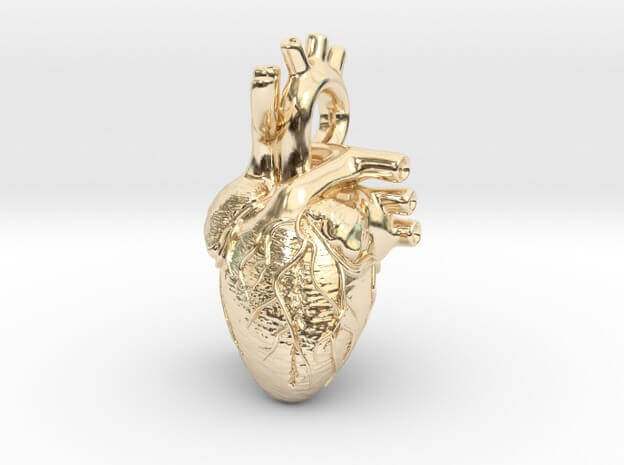 3D Anatomical heart Gold pendant