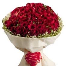 100 Love roses