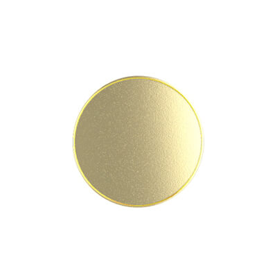 Gold Plated Customized Silver Coin (3)
