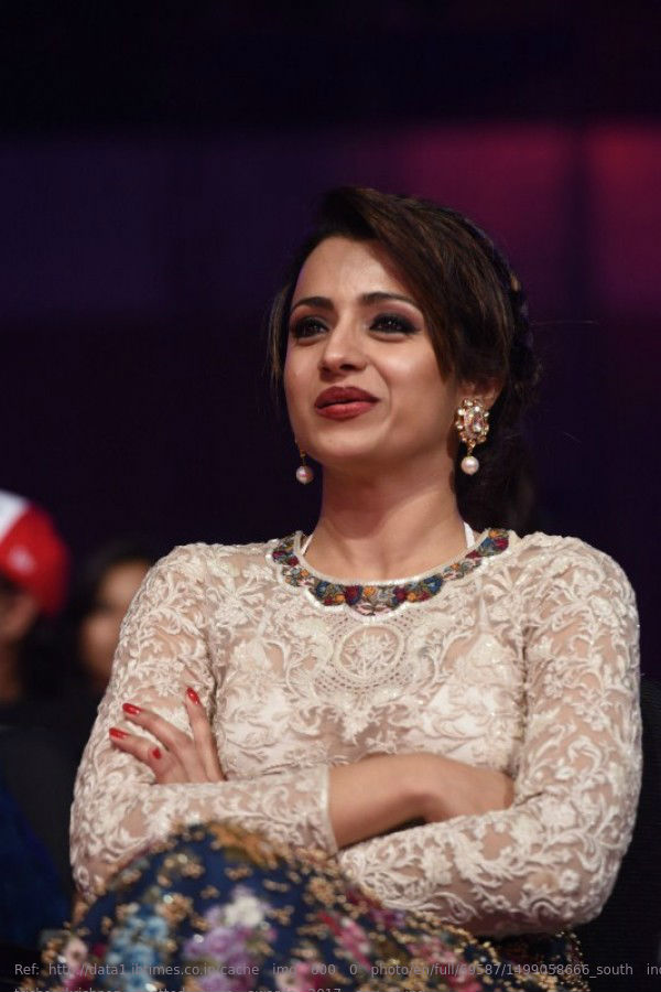1499058666_south-indian-actress-trisha-krishnan-spotted-siima-awards-2017-day-2